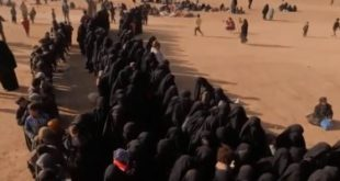 201903070125382538 310x165 - مندوب روسيا لدى الأمم المتحدة: مكافحة الإرهاب في سوريا والعراق تفضح دول في تغذيته