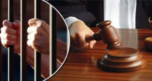 201910081132473247 310x165 - تفاصيل إحالة 3 متهمين بالشروع فى قتل مسنة بمدينة بدر.. والسبب: سرقة 230 جنيها