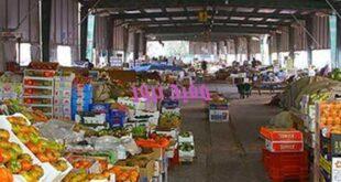 1420755 0 310x165 - استقرار أسعار الفاكهة بسوق العبور.. والبرتقال واليوسفي 4 جنيهات
